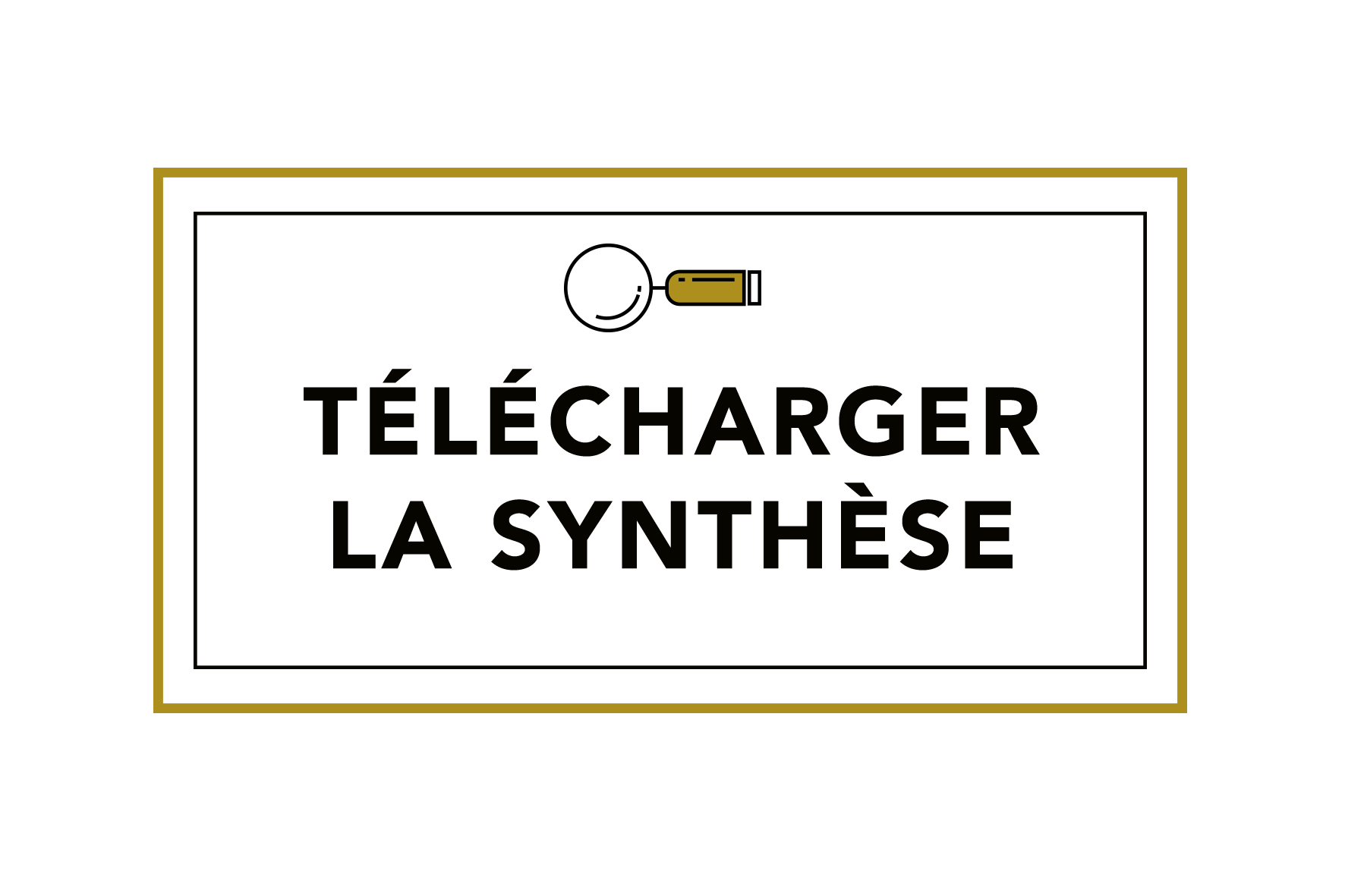 bouton-synthèse.png